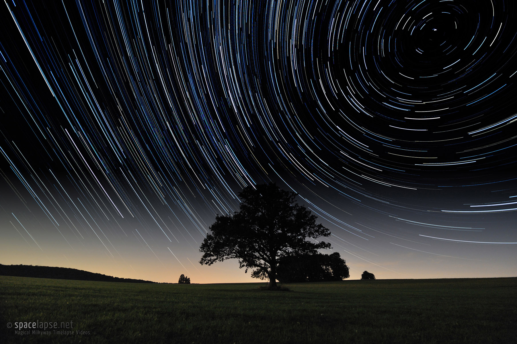 The tree and the stars - Startrails for a lonely tree